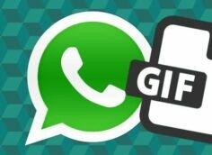 Сделать Gif WhatsApp